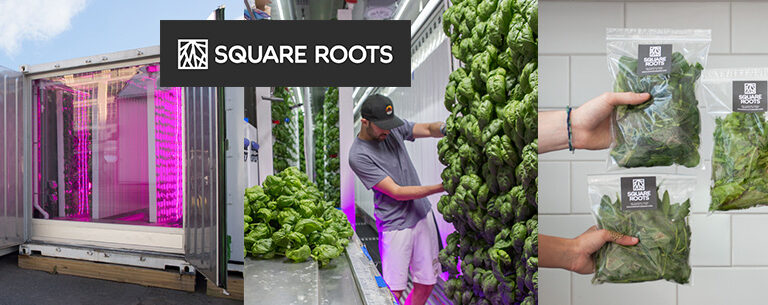 Square_roots